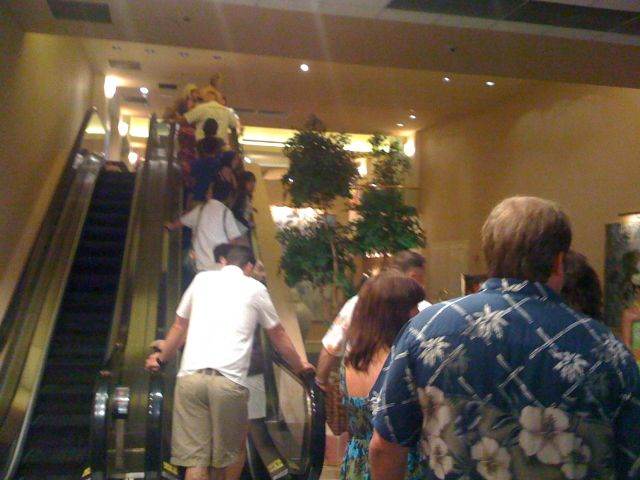 hilton-luau-line-going-up.jpg