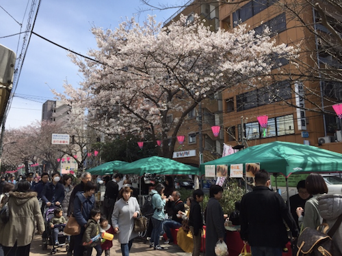 1-a-cherry-blossom-time.png